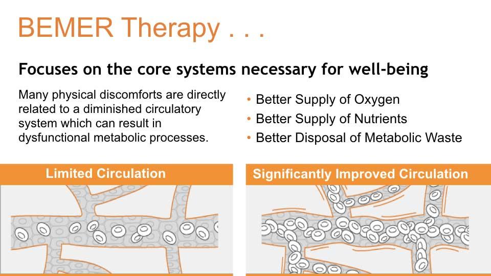 PEMF Therapy - Bemer Pro - Mark Metts - Wellness Coach